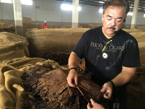 The condition of leaves is continually evaluated as the tobacco continues its long journey from the field to the finished product.